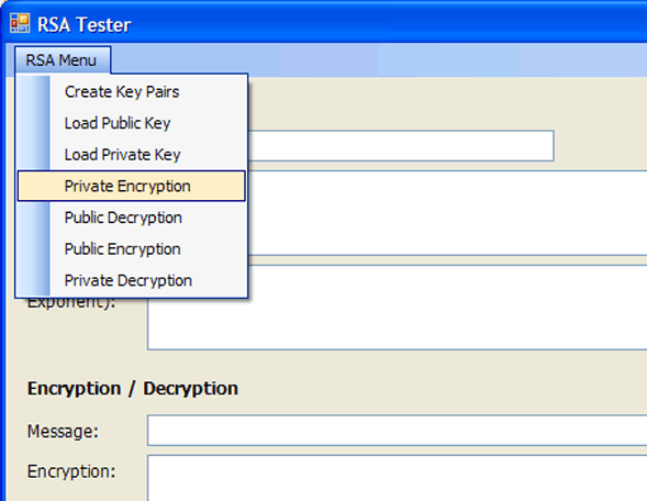 RSA Private Key Encryption